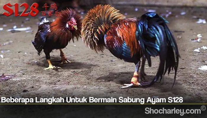 Beberapa Langkah Untuk Bermain Sabung Ayam S128