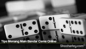 Tips Menang Main Bandar Ceme Online